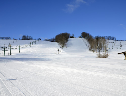 View of the slopes at Boyne Mountain, April 15, 2014